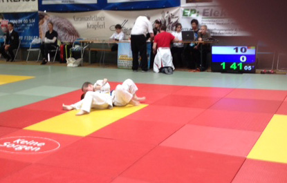 Kyu-Turnier in Niederwaldkirchen