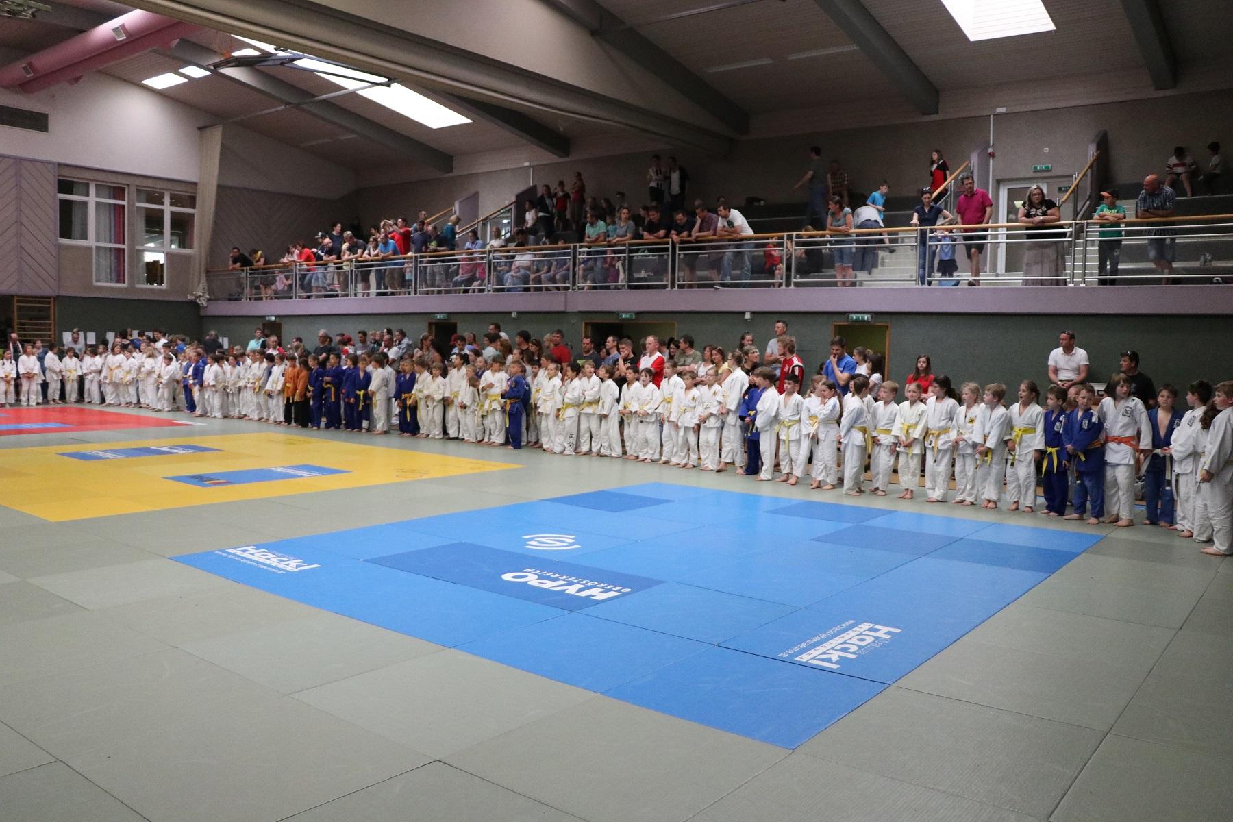 Super Leistung unseres Nachwuchses beim Kyu Turnier in Niederwaldkirchen