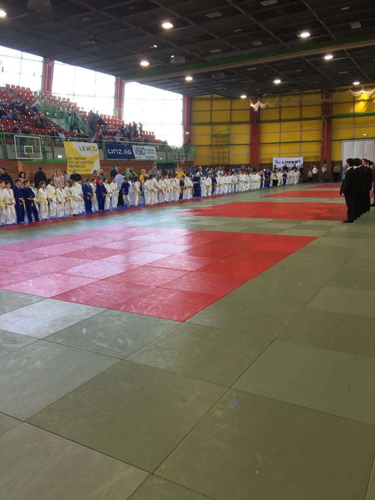 Gute Leistung unseres Judonachwuchses beim Kyu-Frühjahrsturnier in Leonding